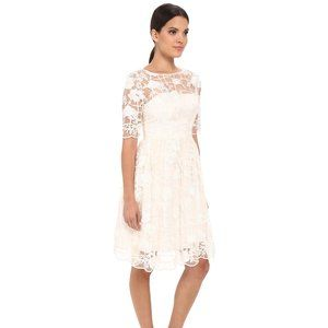Adrianna Papell 4 Grid Lace Embroidery Party Dress